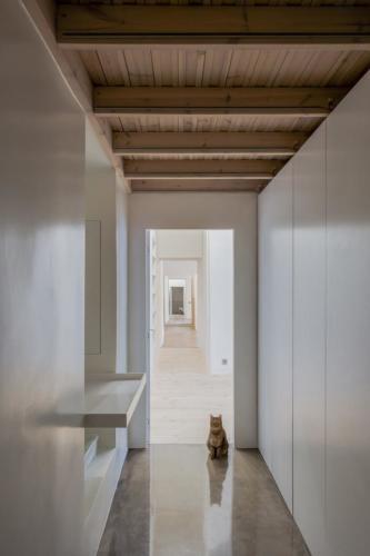 archistory-Архитекторы бюро Šarkauskai перестраивают квартиру 19 века в Вильнюсе00005