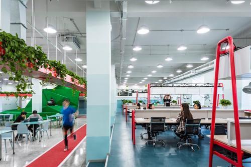 archistory-Офисе в котором можно отдохнуть, побегать или вырастить цветы00014